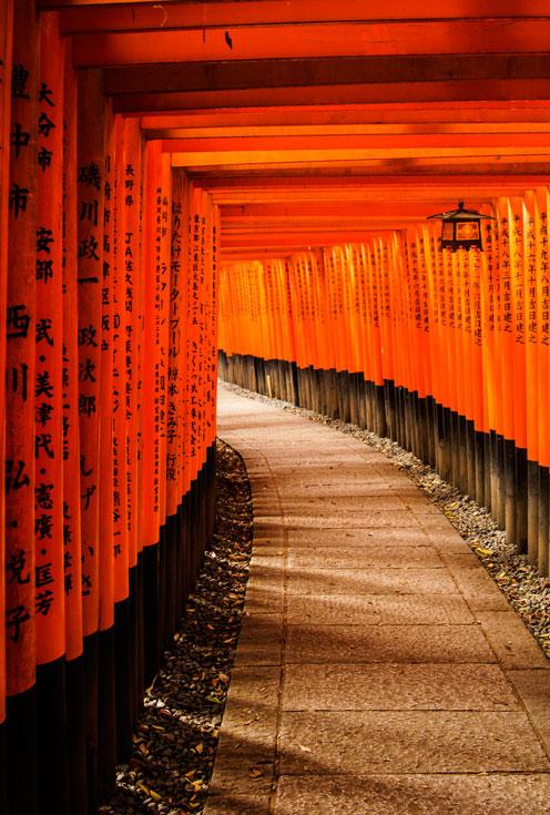 path-through-japanese-tori