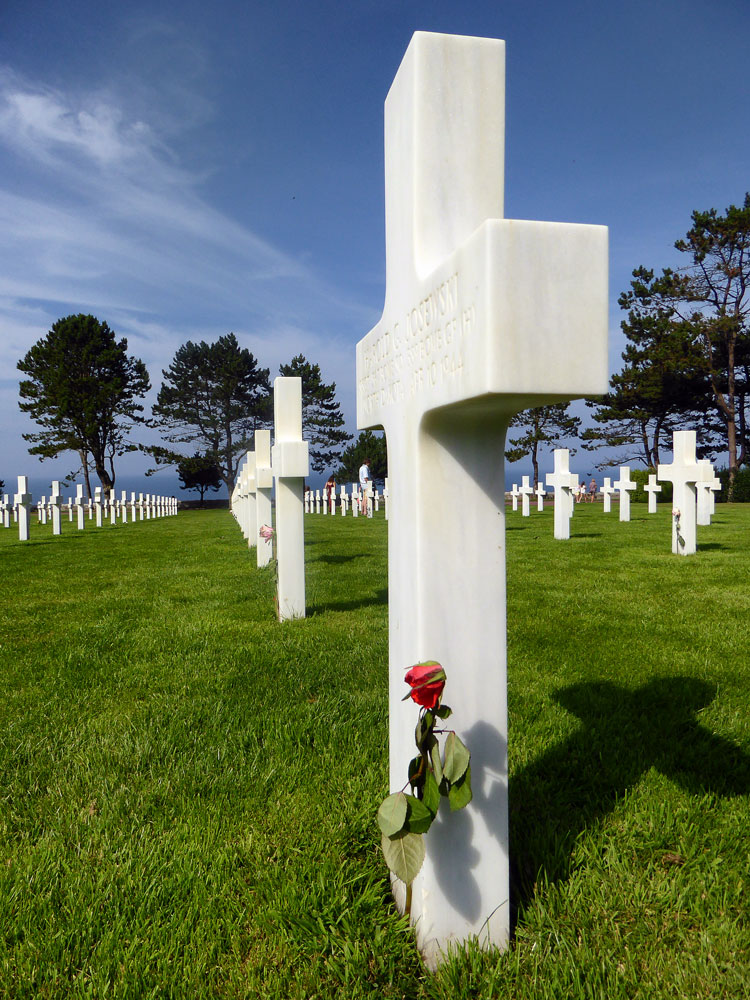 red rose against a white cross in cemetery at omaha beach