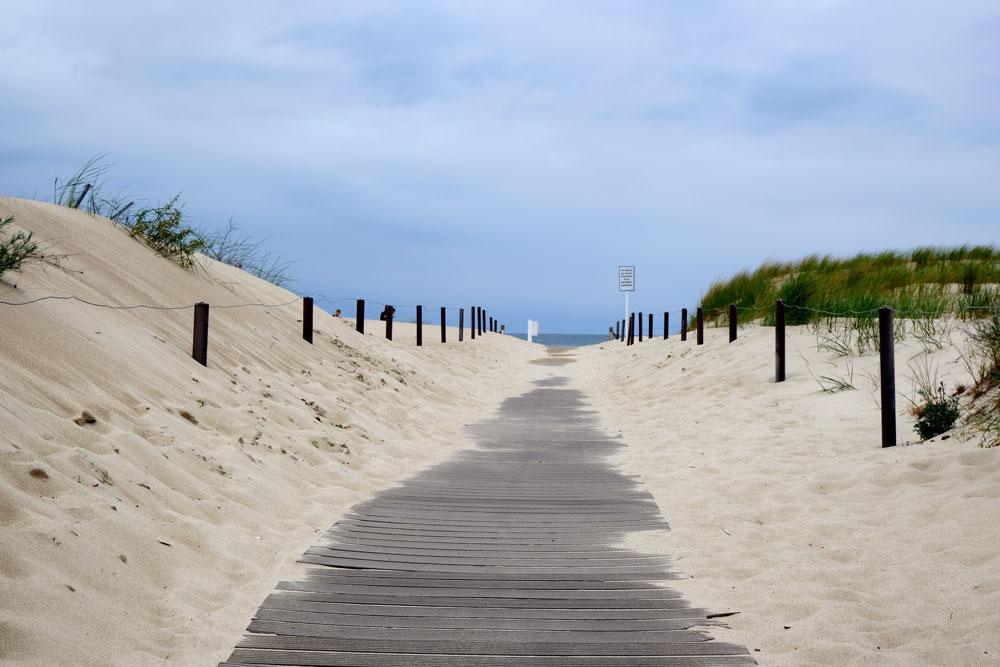 boardwlak leading to warnemunde beach through sand dunes