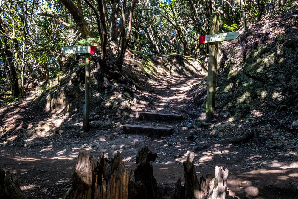 signs for Waymarked trails in Anaga Forest