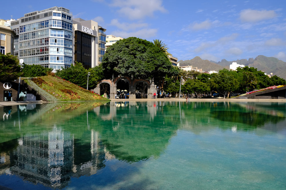 buildings and tree reflected in lake with mountain in background in tenerife