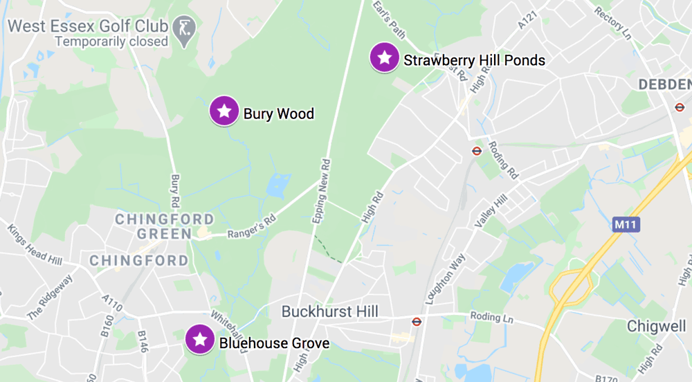 map showing where to find bluebells on epping forest walks