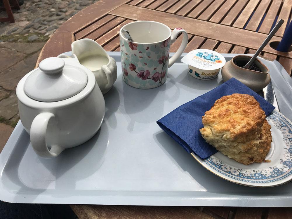 english cream tea with pot of tea scone jam and clotted cream on a tray