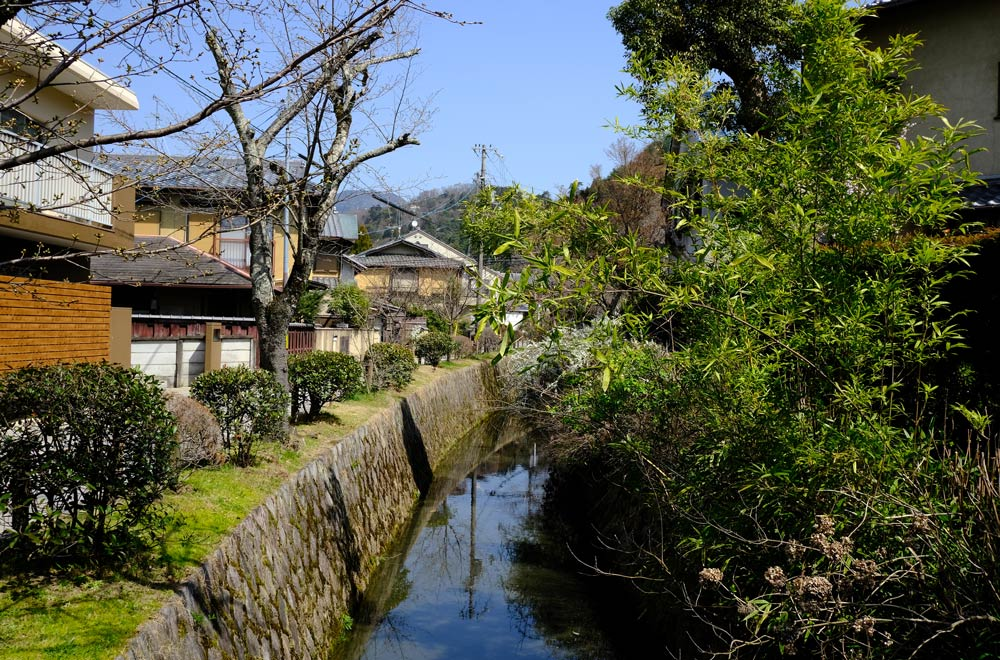 narrow canal lined with foliage and buildings in kyoto known as the philosophers path