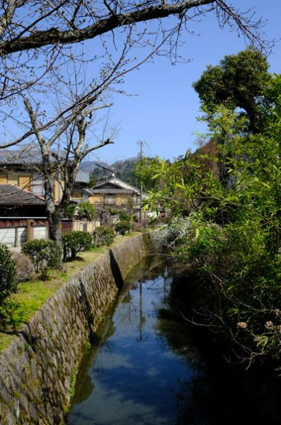 canal lined by greenery and buildings known as philosophers path in kyoto