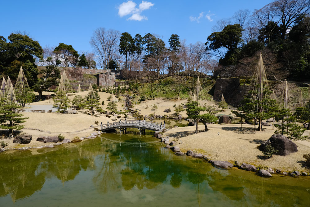 traditional japanese garden with plants and ponds and mini bridge in kanazawa