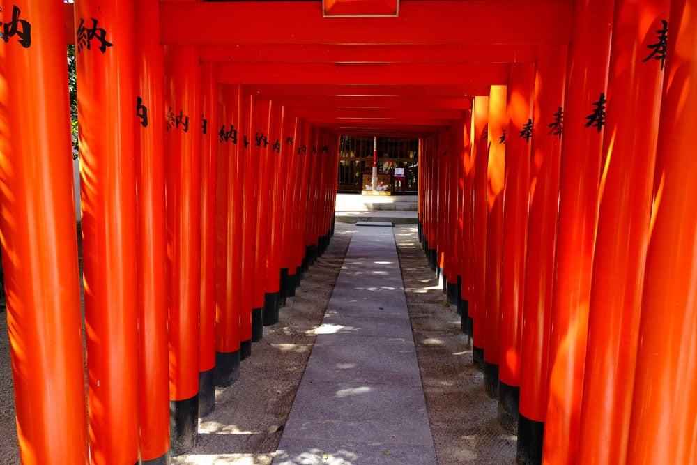 orange coloured torii in temple in fukuoka japan