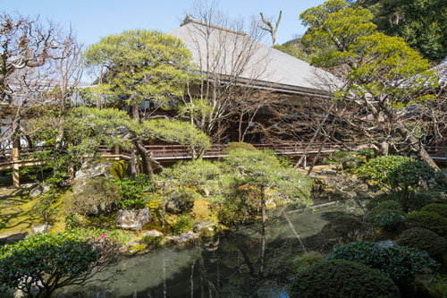 grey roof of Japanese temple next to pond with greenery