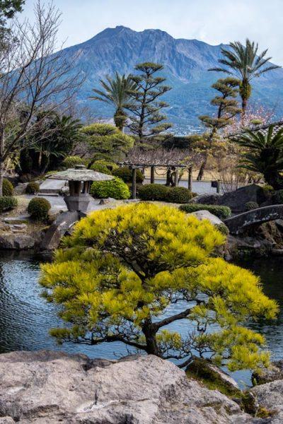 japanese garden with volcanic peak in background