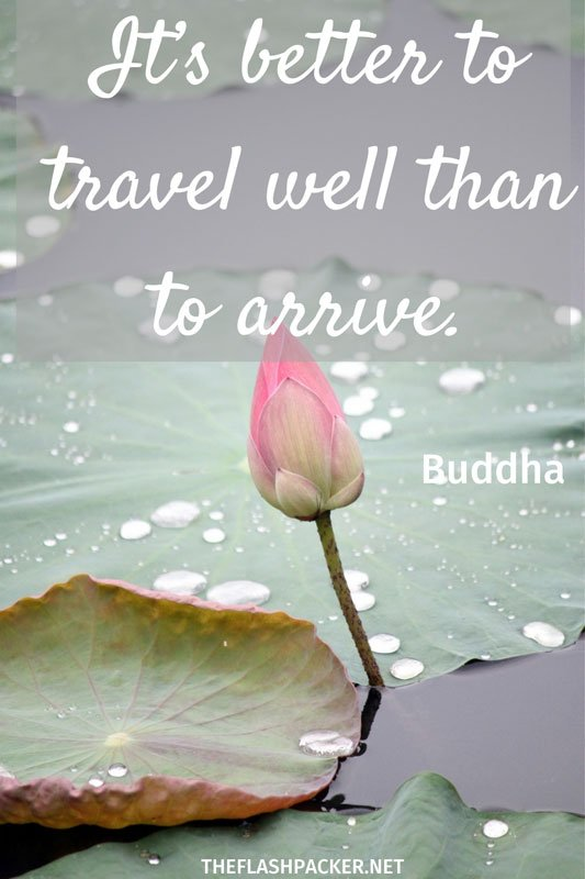 short travel quote with image of a pink lily