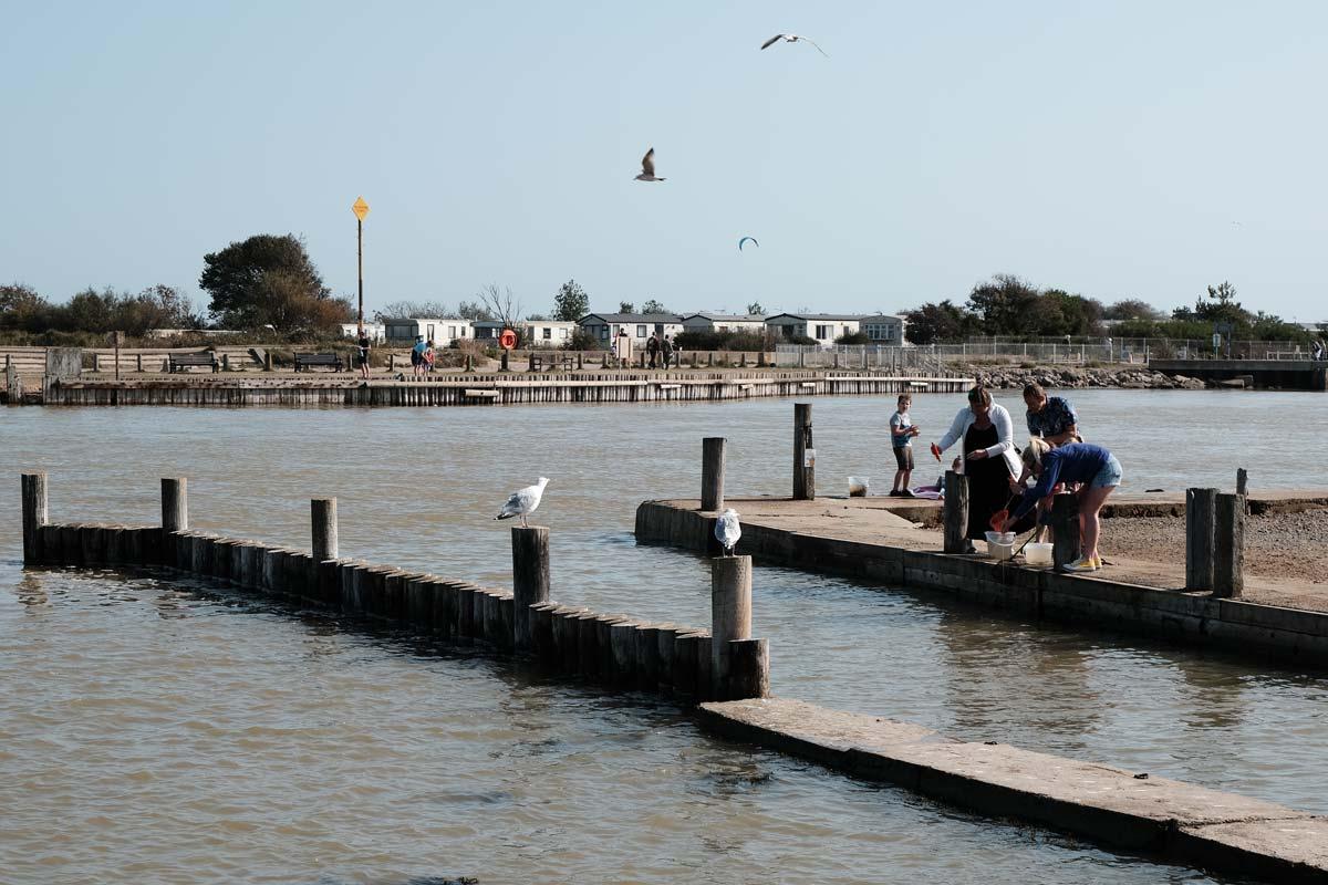 people crabbing in walberswick suffolk with seagulls flying overheah