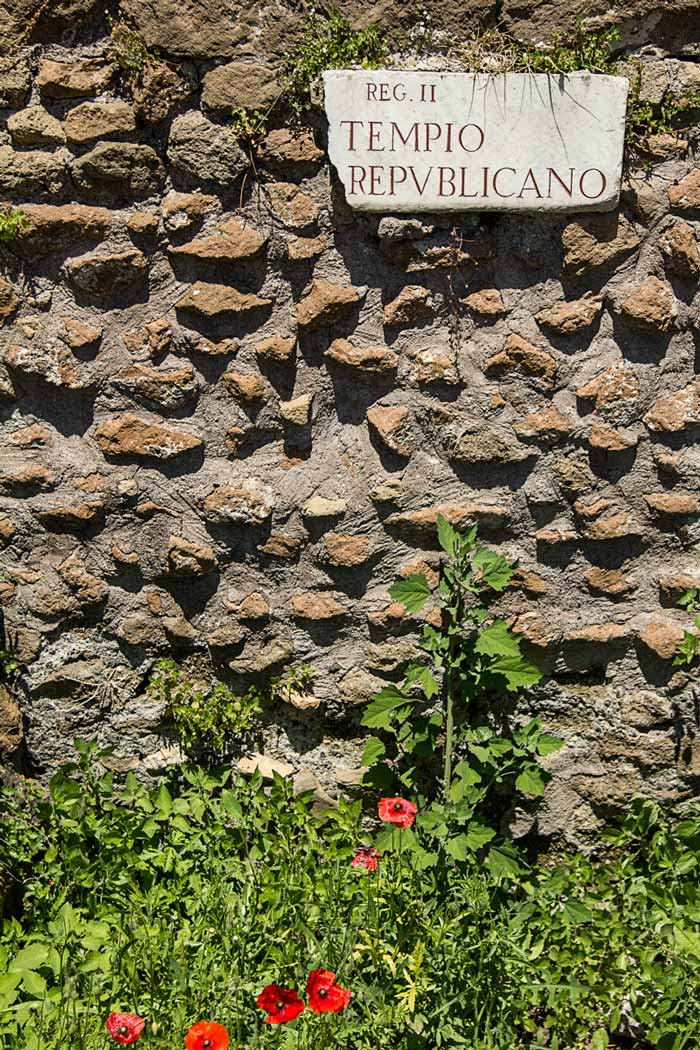 ancient stone wall with latin sign and poppies