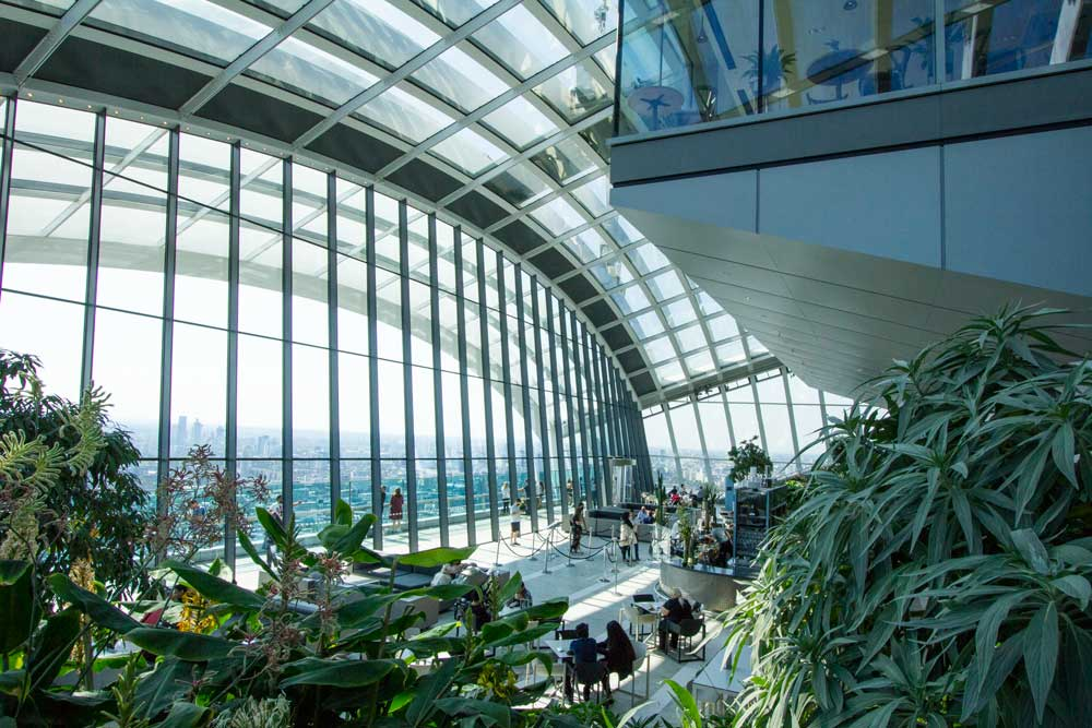 people walking down curved steps in sky garden with lush ferns and curved glass window and ceiling