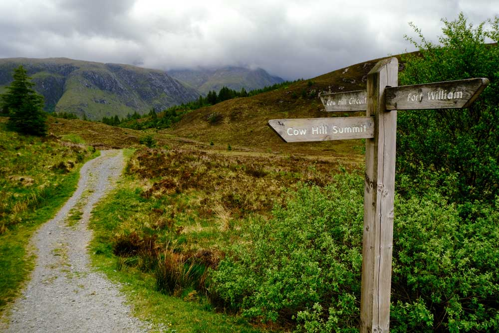 wooden signpost by path in valley