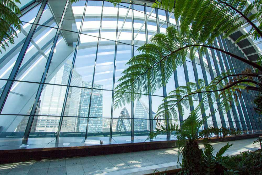 kyscrapers through the curved windows of sky garden london framed by palm trees