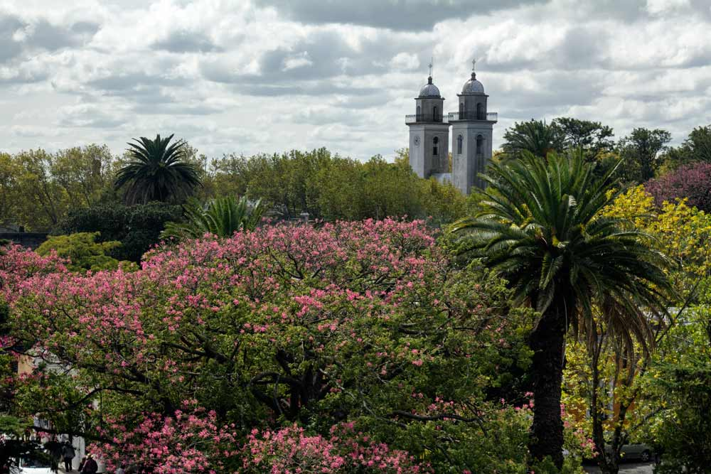 distant view of colonial church behind lush vegetation