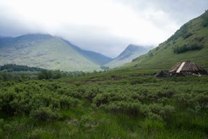 mountain valley in mist