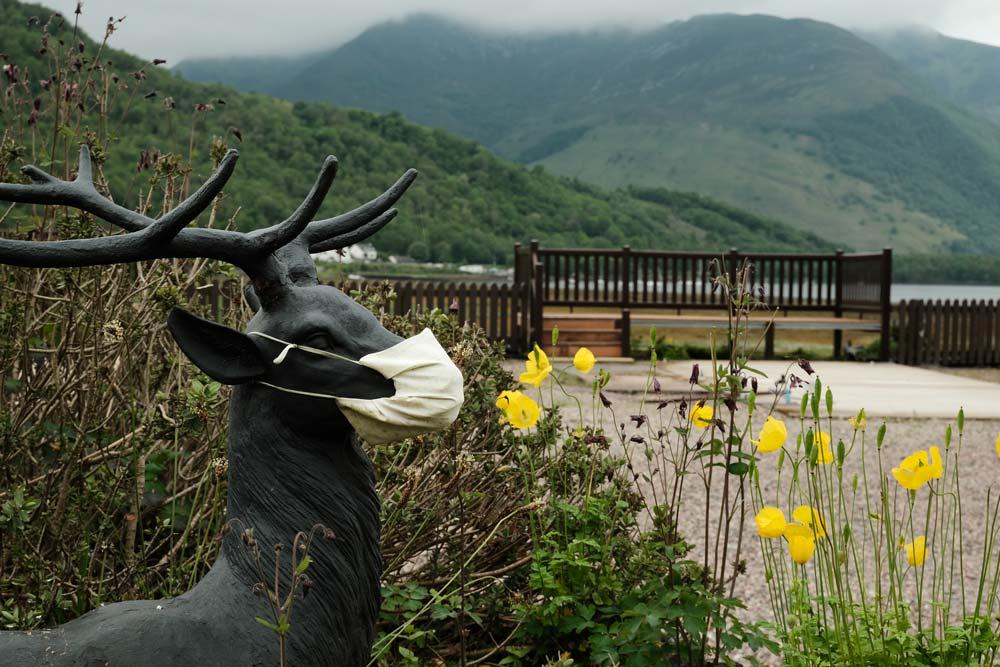 sculpture of deer wearing face mask