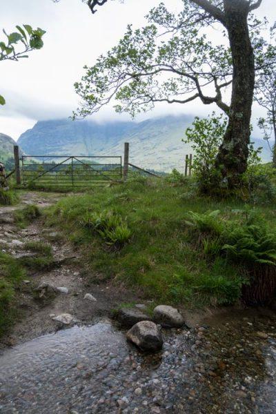 stream leading to metal gate in mountain valley