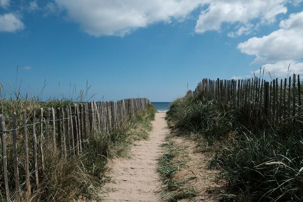 path bordered by fence through sand dunes